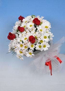Kırçiçekleri ve Güller
