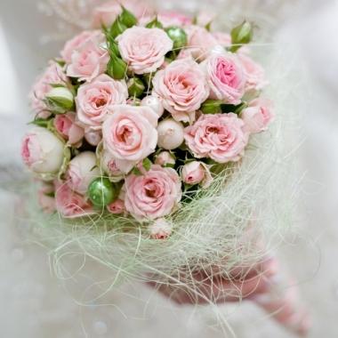 Pembe Gelin Çiçeği