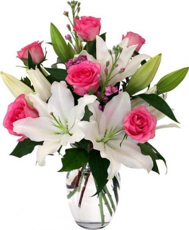 Pembe Beyaz Çiçek Tasarım