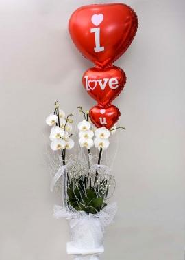 4lü Orkide ve Uçan Balon