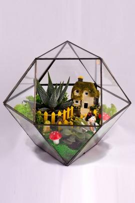 Terrarium Yeşil Bahçe