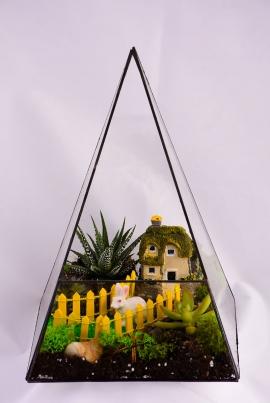 Piramit Teraryum Yeşil Bahçe