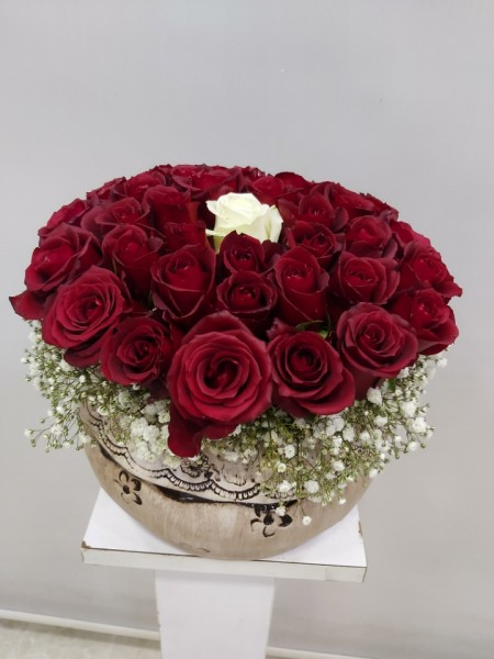 41 Kırmızı Güller