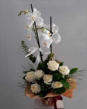 Orkide Beyaz Gül 7 adet